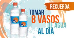 toma 8 vasos de agua al dia